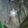 Hindu_1253277_8516_t