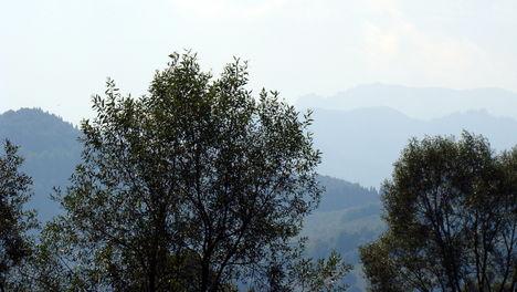 Barangolás a Csukás hegységben  3 - A ködbevesző háttérben a Csukás hegység sziklás csúcsai