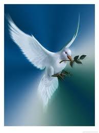 Békesség (fotó)