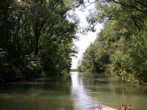 Kimle, Mosoni-Duna, a Cseregle sziget melletti ág, 2003. június 23.-án