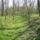 A régi mezőgazdasági öntöző-csatornarendszer maradványai Márialiget térségében