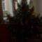 az ifj. Meleg család karácsonyfája