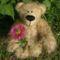 Balu maci virággal