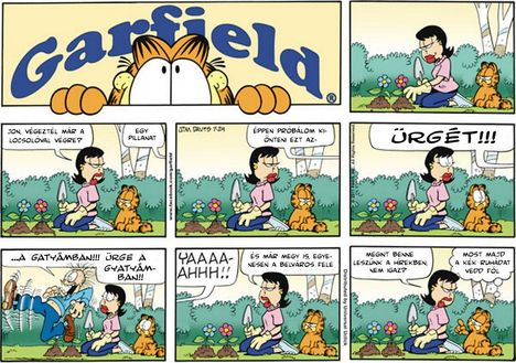 Garfield 110724-magyarul