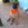 Jery_1205592_5230_t