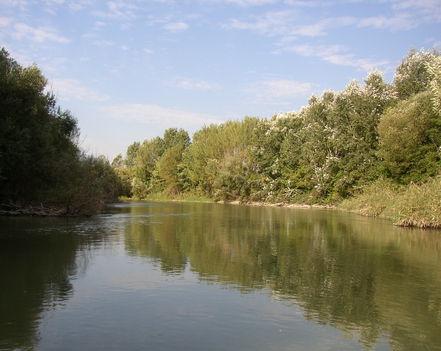 Feketeerdő,Mosoni-Duna, a Házi-erdő melletti szakasz, 2006. szeptember 26