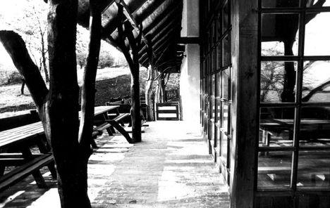 Visegrád Mogyoró-hegy tanya
