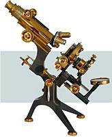 hagyományos fénymikroszkóp