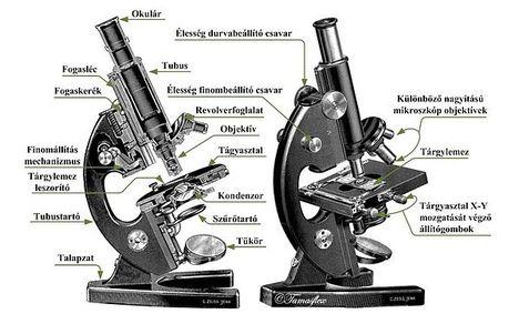 Mikroszkóp felépítése