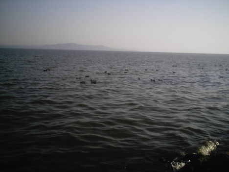 Balaton 075