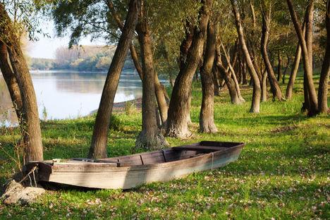 Csónakos csendélet