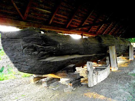 12.c.Tiszabecsnél 1990-ben kiemelt csónaktest