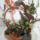 Szupperné virágai