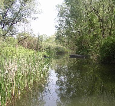 Darnózseli, Nováki csatorna, 2003. május 03.-án