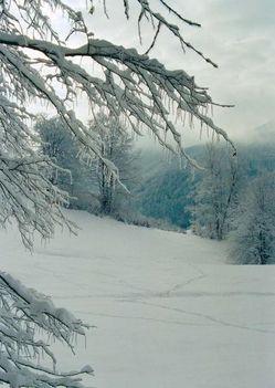 A havas Hargita