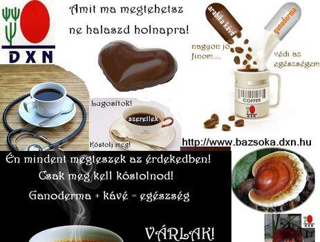zsokávéja 4