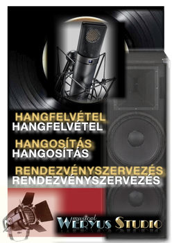 Hangfelvétel  2011