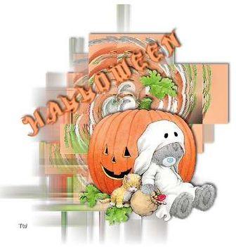 Maci halloween 2