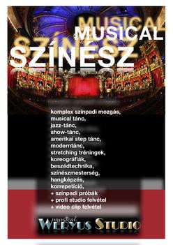 MUSICAL SZÍNÉSZ Képzés 2011