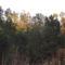 Az ősz szinei