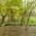 Szép a környezetünk Kisbodak község külterületén