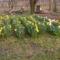 2008 Tavasz