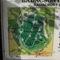 Badacsony túrista térképe