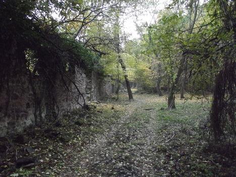 Bazalt épület romok a Badacsonyon