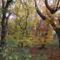 Őszi szinek