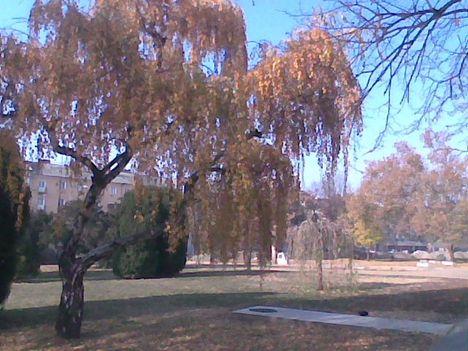 Kép003jpg Szép őszi színek