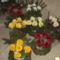 virágosok