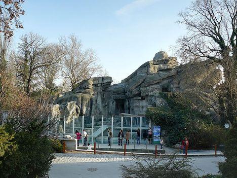 Bp.-i állatkert 6