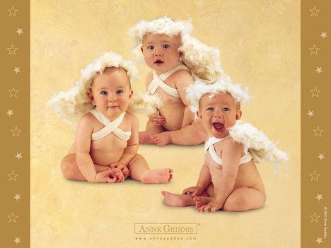 Igazi angyalkák - Anne Geddes