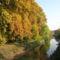 Vízpart őszi fákkal