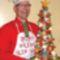 a szakács karácsonyfája