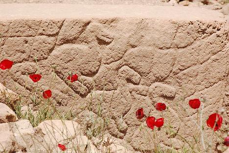 göbekli tepe - a török stonehenge