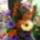 Matuszka Teréz Képei Virágkötészet