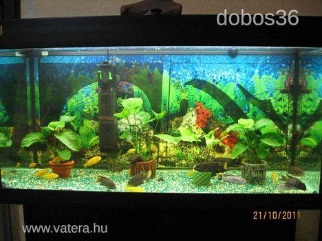 akvarium JUWEL 200 l