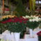 Kecel Virág kiállítás 2011 019