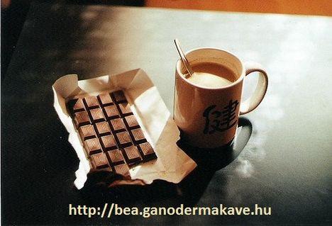 csokis_bogre