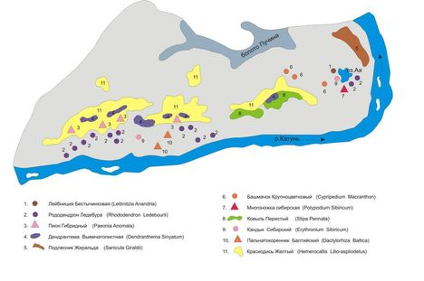 aja térkép