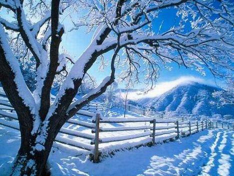 Csillogó hó 5