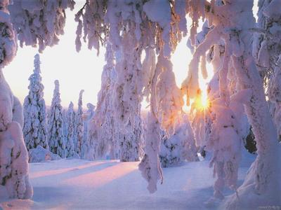 Téli csillogás 2
