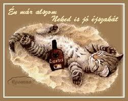 Drága Barátnőm sok szeretettel kívánok Neked jó éjszakát