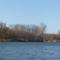 Dunasziget, a Hullámtéri ágrendszer a Denkpáli ágvéglezárás felvízi oldalán, 2011. november 28.-án