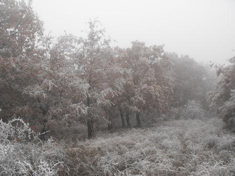 2011 december, Mátra