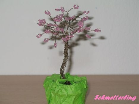 Gyöngyfa 1