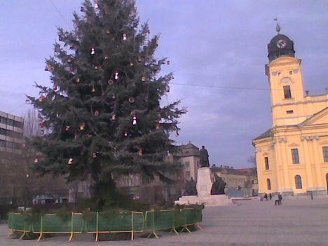 Kép010 jpg. A város karácsonyfája.