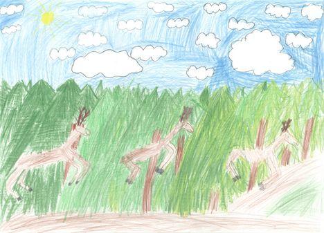Amikor apukámmal az erdőt jártuk... - Bogdányi Veronika 1.o.