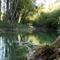 Halászi, a Mosoni-Duna főmedertől a jobb parton leválasztott vizes élőhely